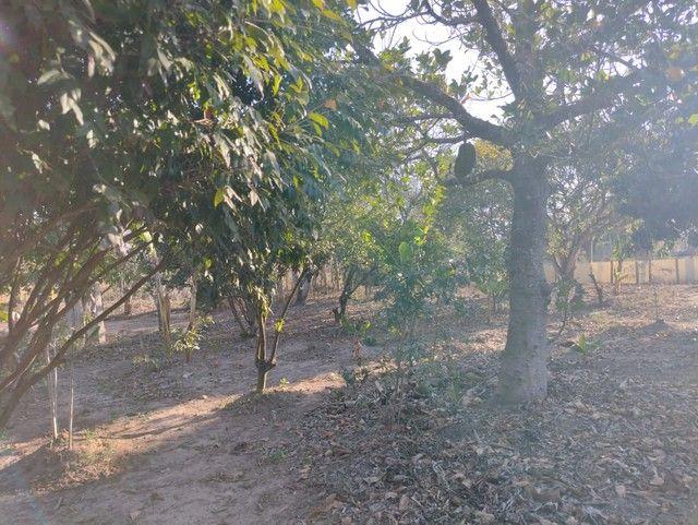 Chácara a Venda em Porangaba Bairro dos Marianos com 1.000 m² Terreno, Área Construída 200 - Foto 11