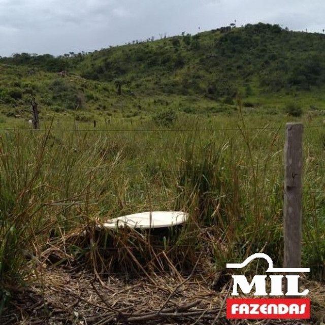 Fazenda de 320 alqueires (1550 hectares) em Vila Rica - MT - Foto 5