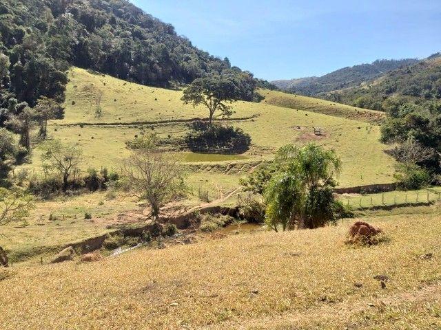 Fazenda 80 Alqueires Sendo 20 Alqueires Mata APP, Casa Sede(Em Reforma) e Caseiro Agua Nas - Foto 12