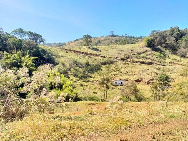 Fazenda 80 Alqueires Sendo 20 Alqueires Mata APP, Casa Sede(Em Reforma) e Caseiro Agua Nas - Foto 10