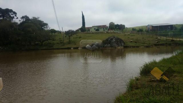 Chácara à venda em Zona rural, Contenda cod:219-16 - Foto 16