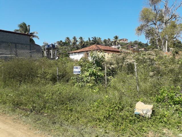 Terreno na Ilha de Amoreiras ( Ponta de Areia-Itaparica) - Foto 14