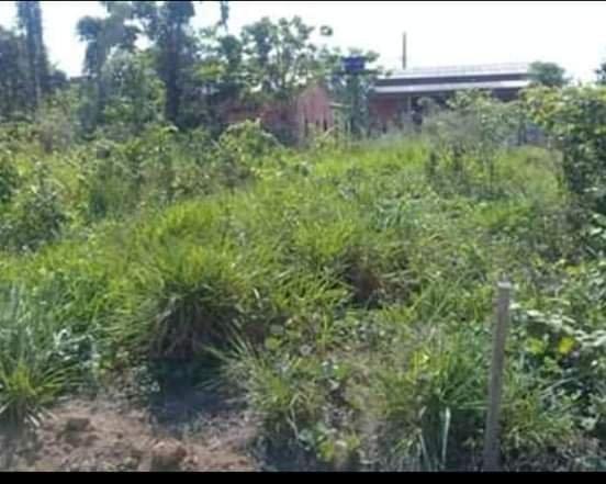 Vendo terreno na vila acre aceito prospostas - Foto 2
