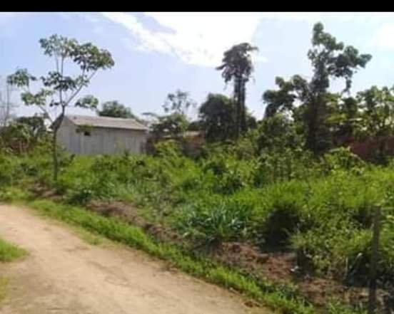 Vendo terreno na vila acre aceito prospostas