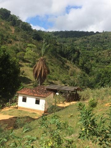 Fazenda no Vale do Jequiriçá - Foto 13