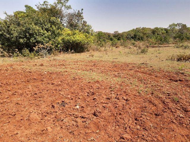 Arrendamento Fazendas PR Ms e Mt - Foto 2