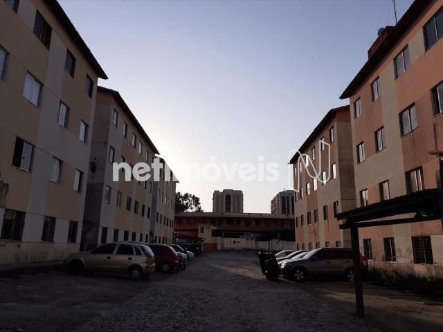 Apartamento à venda com 2 dormitórios em Serrinha, Fortaleza cod:769589 - Foto 10