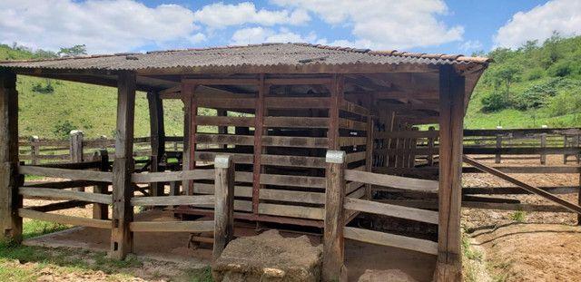 Fazenda 871 hectares no município de Divisa Alegre MG - Foto 14