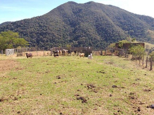 Fazenda 80 Alqueires Sendo 20 Alqueires Mata APP, Casa Sede(Em Reforma) e Caseiro Agua Nas - Foto 5
