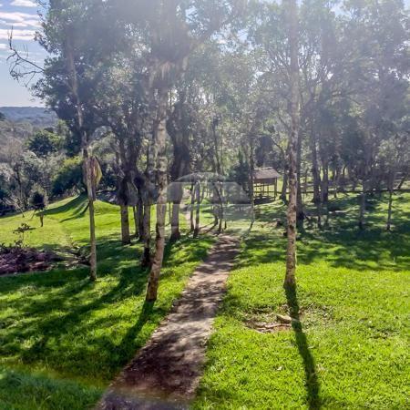 Chácara à venda em Borda do campo, São josé dos pinhais cod:152480 - Foto 15