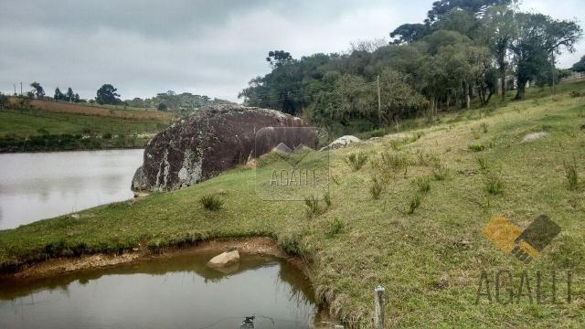 Chácara à venda em Zona rural, Contenda cod:219-16 - Foto 9