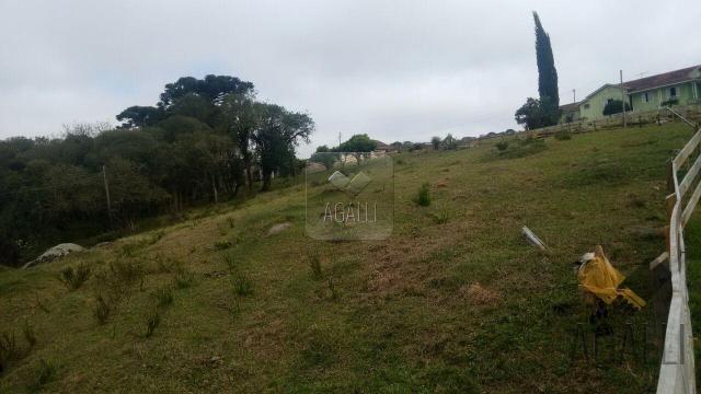 Chácara à venda em Zona rural, Contenda cod:219-16 - Foto 5
