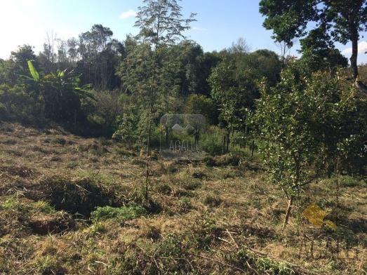 Terreno à venda em Centro, Colombo cod:300-17 - Foto 7