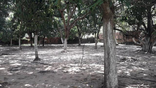 [Venda] Sítio na avenida | Casa + Campo + Açudes | 16.000 m² - Foto 10