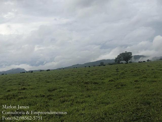 Fazenda em Vila Propício-Go! - Foto 2