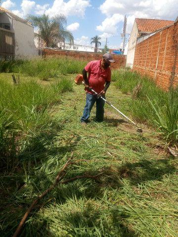 Limpeza de Terrenos, Poda de Árvores e serviços de jardinagem completo - Foto 2
