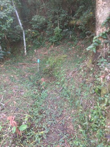 Maravilhoso Sítio de 9.9 Alqueires na Serra Mantiqueira Município Piranguçu-Mg - Foto 8