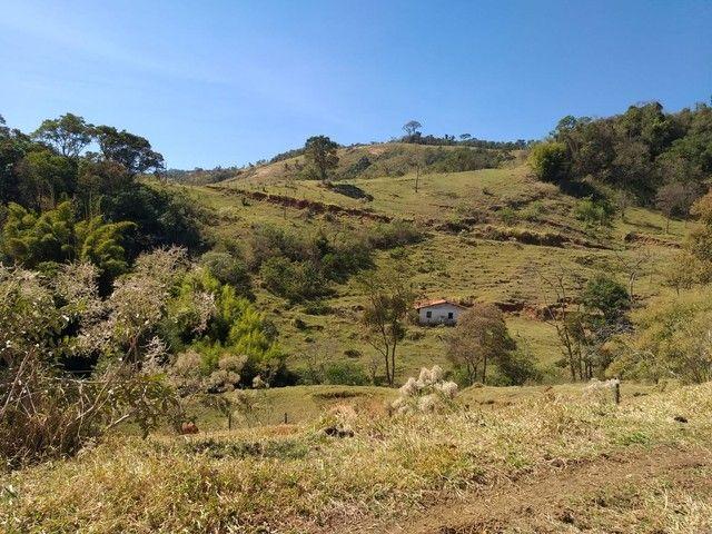 Fazenda 80 Alqueires Sendo 20 Alqueires Mata APP, Casa Sede(Em Reforma) e Caseiro Agua Nas - Foto 9