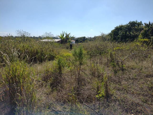 Lote ou Terreno a Venda no Bairro dos Ipes, com 1260 m²  Porangaba - SP - Foto 2