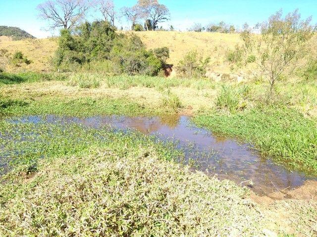 Fazenda 80 Alqueires Sendo 20 Alqueires Mata APP, Casa Sede(Em Reforma) e Caseiro Agua Nas - Foto 11