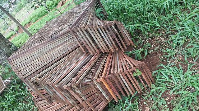 Bandejas e Tubetes para produção de mudas - Foto 2