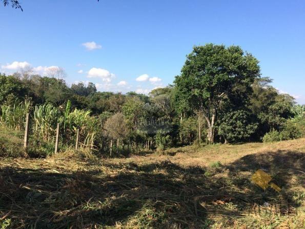 Terreno à venda em Centro, Colombo cod:300-17 - Foto 6