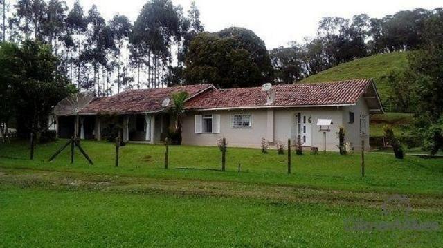 Chácara para Venda, 168.604,00 m², São Bento do Sul / SC, bairro Serra Alta - Foto 3