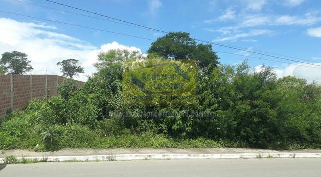 Lote Com Excelente Localização ? Em Rua Principal - Gravatá/PE / Propriedade ID : L0686 - Foto 3