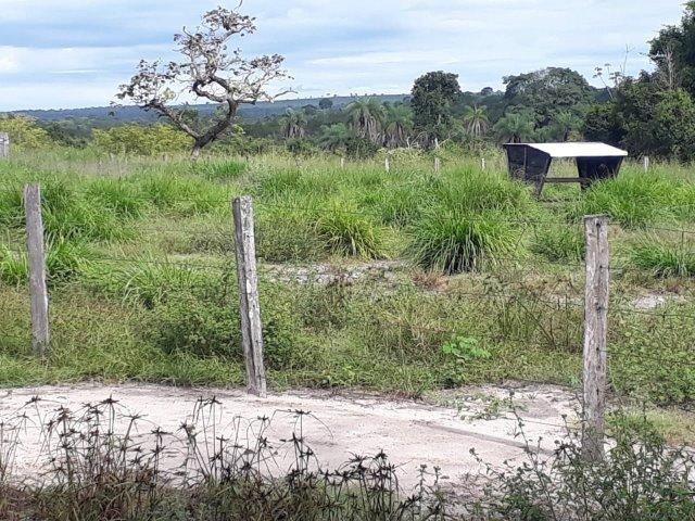 Fazenda Paraiso - Foto 13