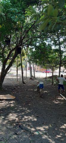 Terreno em Belterra 10x116 - Foto 4