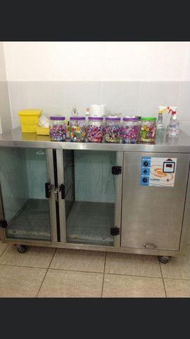 Máquina para secar animais - Foto 3