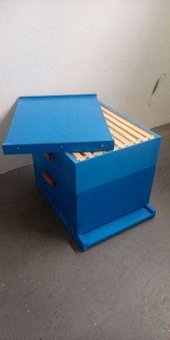 Caixa de abelha ninho e melgueira com quadros. Novos, sem uso. - Foto 3