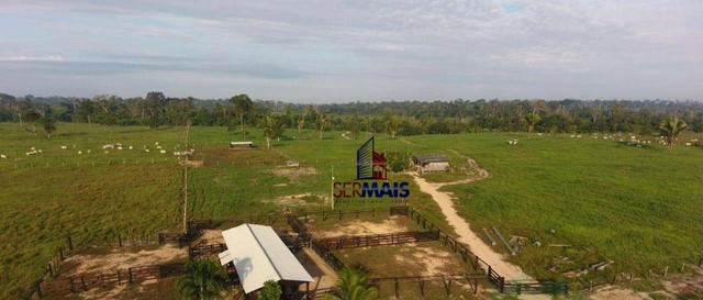 Sítio à venda por R$ 1.680.000 - Área Rural de Porto Velho - Porto Velho/RO - Foto 5