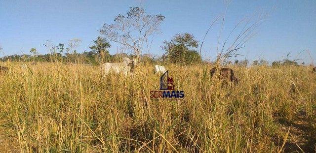Sítio com 1 dormitório à venda, por R$ 3.150.000 - Zona Rural - Presidente Médici/RO - Foto 5