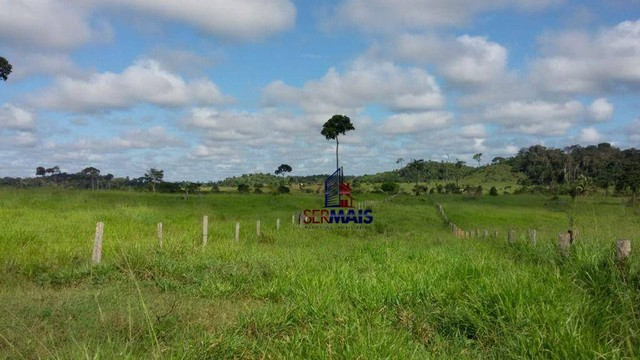 Fazenda à venda, por R$ 35.000.000 - Zona Rural - Machadinho D'Oeste/RO - Foto 7