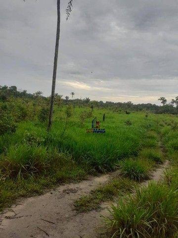Sítio à venda, por R$ 400.000 - Área Rural de Porto Velho - Porto Velho/RO - Foto 9