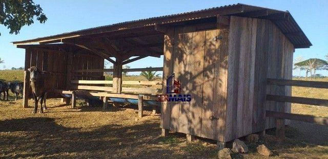 Sítio com 1 dormitório à venda, por R$ 3.150.000 - Zona Rural - Presidente Médici/RO - Foto 7