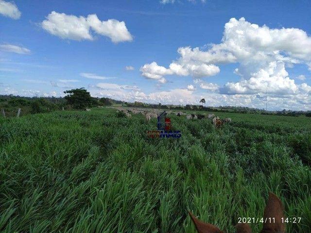 Fazenda à venda, por R$ 14.040.000 - Zona Rural - São Francisco do Guaporé/RO - Foto 5