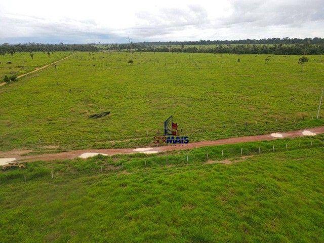 Fazenda à venda, por R$ 40.000.000 - Área Rural de Porto Velho - Porto Velho/RO - Foto 5