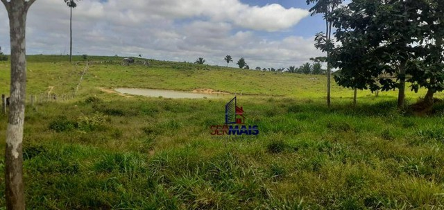 Sítio à venda por R$ 855.000 - Zona Rural - Vale do Anari/RO