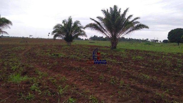 Fazenda à venda por R$ 9.234.000,00 - Zona Rural - Alta Floresta D'Oeste/RO - Foto 7