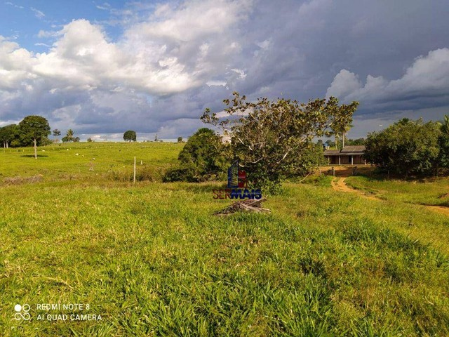 Fazenda à venda, por R$ 3.600.000 - Zona Rural - Vale do Anari/RO - Foto 6
