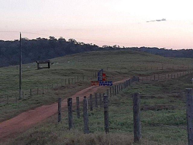 Fazenda à venda, por R$ 7.900.000 - Centro - Alta Floresta D'Oeste/RO - Foto 7