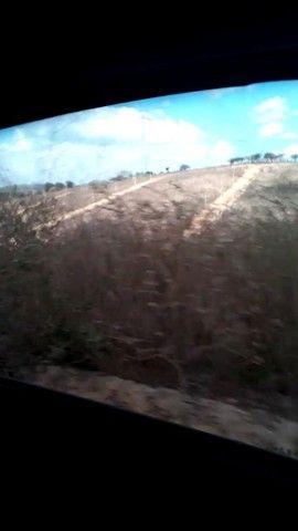 Terreno em bezerros  - Foto 4
