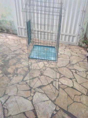 Viveiro para calopsita e papagaio  - Foto 2