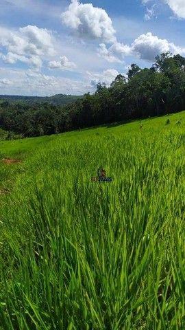 Sítio à venda, 508200 m² por R$ 670.000 - Zona Rural - Vale do Anari/RO - Foto 16