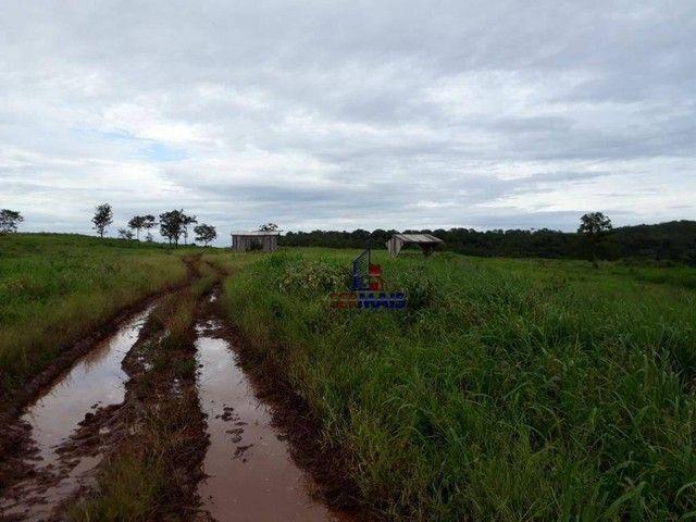 Fazenda à venda por R$ 9.234.000,00 - Zona Rural - Alta Floresta D'Oeste/RO - Foto 11