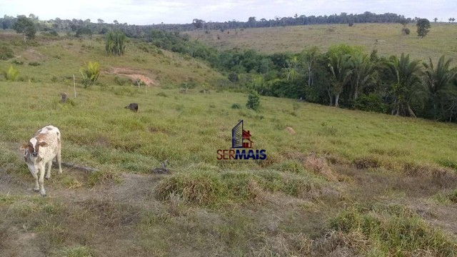 Sítio com 1 dormitório à venda, 493679 m² por R$ 850.000 - Zona Rural - Vale do Anari/RO - Foto 4