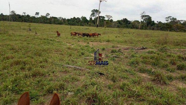 Fazenda à venda, por R$ 10.925.000 - Área Rural de Porto Velho - Porto Velho/RO - Foto 5