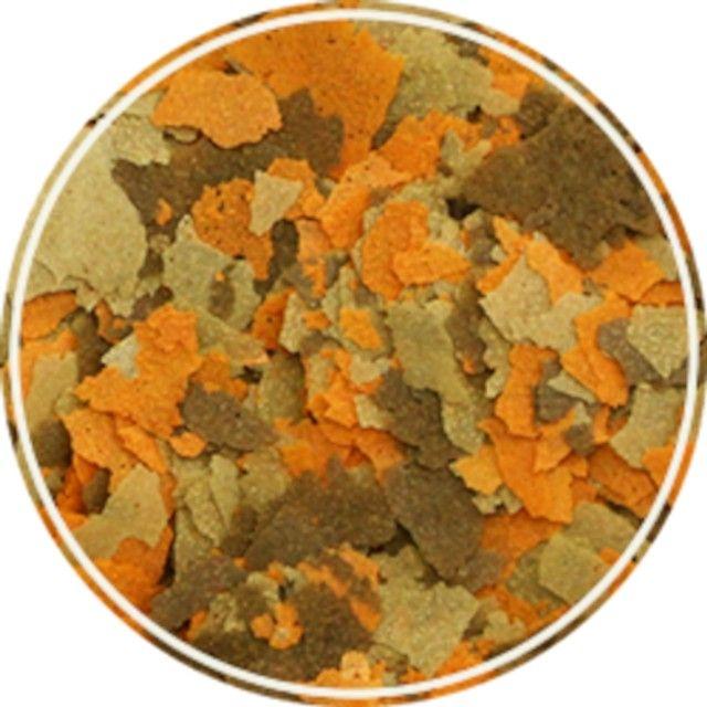 Ração Para Peixes Ornamentais Alcon Colours 20g - Foto 2